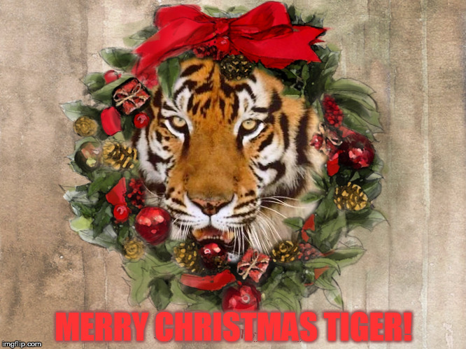MERRY CHRISTMAS TIGER! | made w/ Imgflip meme maker