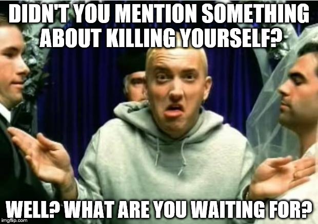 DIDN'T YOU MENTION SOMETHING ABOUT KILLING YOURSELF? WELL? WHAT ARE YOU WAITING FOR? | image tagged in eminem | made w/ Imgflip meme maker