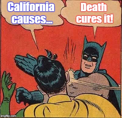 Batman Slapping Robin Meme | California causes... Death cures it! | image tagged in memes,batman slapping robin | made w/ Imgflip meme maker