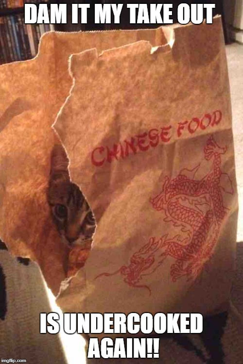 undercooked take out |  DAM IT MY TAKE OUT; IS UNDERCOOKED AGAIN!! | image tagged in china | made w/ Imgflip meme maker