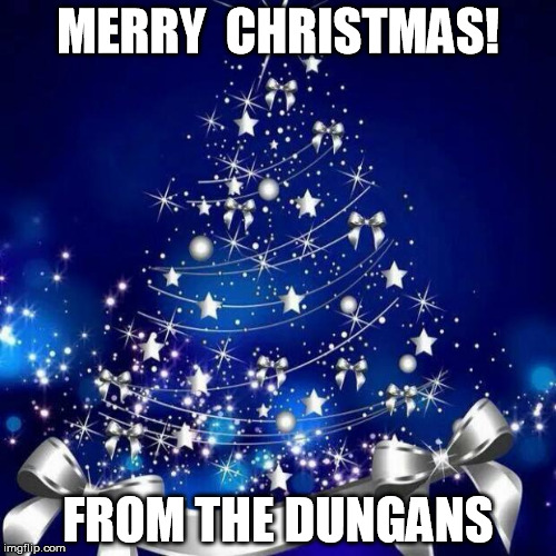 Merry Christmas  | MERRY  CHRISTMAS! FROM THE DUNGANS | image tagged in merry christmas | made w/ Imgflip meme maker