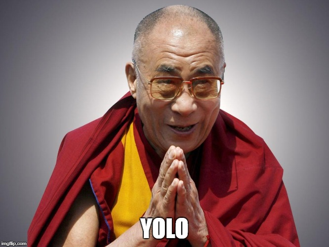 YOLO | image tagged in dali llama | made w/ Imgflip meme maker