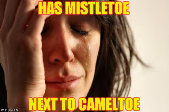 First World Problems Meme | HAS MISTLETOE NEXT TO CAMELTOE | image tagged in memes,first world problems | made w/ Imgflip meme maker