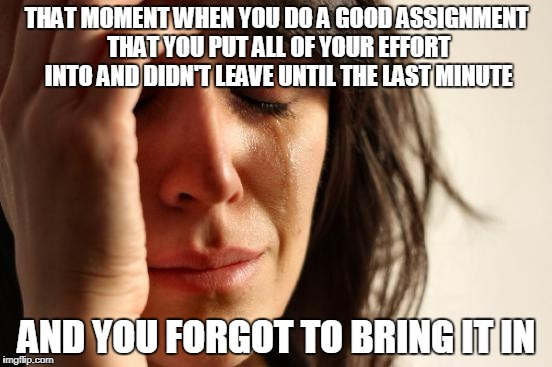First World Problems Meme | THAT MOMENT WHEN YOU DO A GOOD ASSIGNMENT THAT YOU PUT ALL OF YOUR EFFORT INTO AND DIDN'T LEAVE UNTIL THE LAST MINUTE AND YOU FORGOT TO BRIN | image tagged in memes,first world problems | made w/ Imgflip meme maker