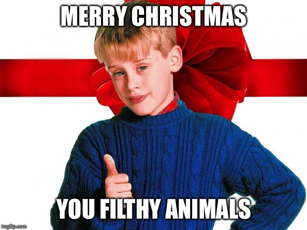 MERRY CHRISTMAS YOU FILTHY ANIMALS | image tagged in home alone | made w/ Imgflip meme maker