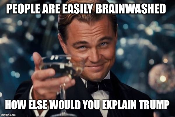 Leonardo Dicaprio Cheers Meme | PEOPLE ARE EASILY BRAINWASHED HOW ELSE WOULD YOU EXPLAIN TRUMP | image tagged in memes,leonardo dicaprio cheers | made w/ Imgflip meme maker