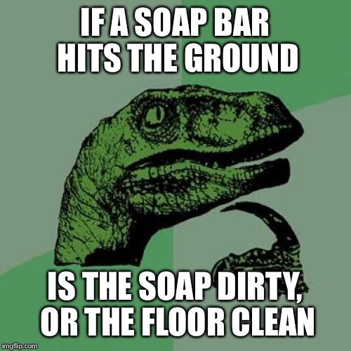 Philosoraptor Meme | IF A SOAP BAR HITS THE GROUND IS THE SOAP DIRTY, OR THE FLOOR CLEAN | image tagged in memes,philosoraptor | made w/ Imgflip meme maker