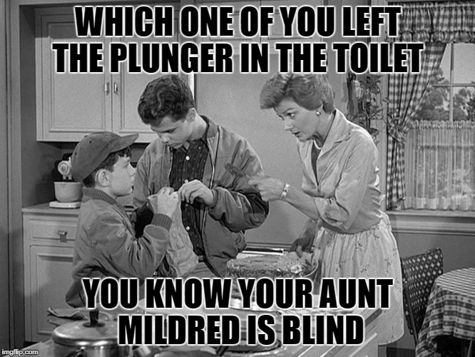 who left the plunger in the toilet  | WHICH ONE OF YOU LEFT THE PLUNGER IN THE TOILET YOU KNOW YOUR AUNT MILDRED IS BLIND | image tagged in leave it to beaver | made w/ Imgflip meme maker