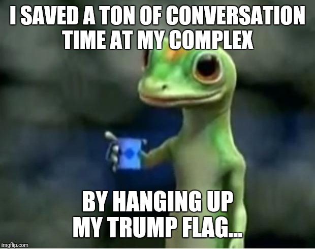 Geico Gecko | I SAVED A TON OF CONVERSATION TIME AT MY COMPLEX BY HANGING UP MY TRUMP FLAG... | image tagged in geico gecko,futurama fry,funny memes,the most interesting man in the world | made w/ Imgflip meme maker