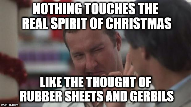 Real Nice - Christmas Vacation | NOTHING TOUCHES THE REAL SPIRIT OF CHRISTMAS LIKE THE THOUGHT OF RUBBER SHEETS AND GERBILS | image tagged in real nice - christmas vacation | made w/ Imgflip meme maker