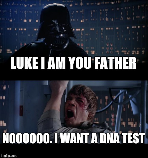 Star Wars No Meme | LUKE I AM YOU FATHER NOOOOOO. I WANT A DNA TEST | image tagged in memes,star wars no | made w/ Imgflip meme maker