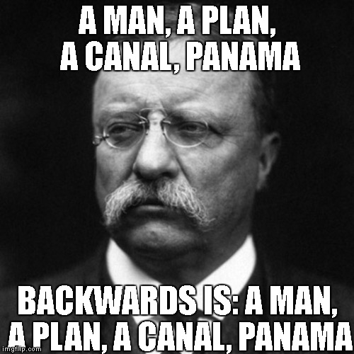 A MAN, A PLAN, A CANAL, PANAMA BACKWARDS IS: A MAN, A PLAN, A CANAL, PANAMA | image tagged in big teddy | made w/ Imgflip meme maker