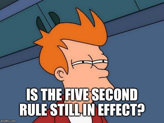 Futurama Fry Meme | IS THE FIVE SECOND RULE STILL IN EFFECT? | image tagged in memes,futurama fry | made w/ Imgflip meme maker