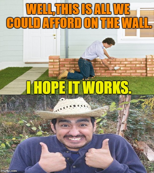 It's coming along great | WELL,THIS IS ALL WE COULD AFFORD ON THE WALL. I HOPE IT WORKS. | image tagged in funny memes,trump wall,mexican | made w/ Imgflip meme maker