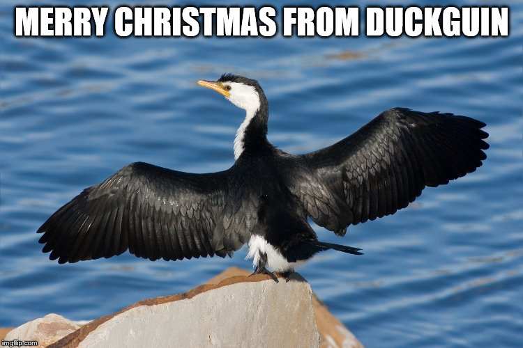 Duckguin | MERRY CHRISTMAS FROM DUCKGUIN | image tagged in duckguin | made w/ Imgflip meme maker