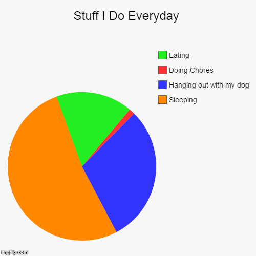 Stuff I Do Everyday | Sleeping, Hanging out with my dog, Doing Chores, Eating | image tagged in funny,pie charts | made w/ Imgflip pie chart maker