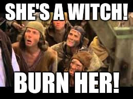 Monty Python | SHE'S A WITCH! BURN HER! | image tagged in monty python,witch | made w/ Imgflip meme maker