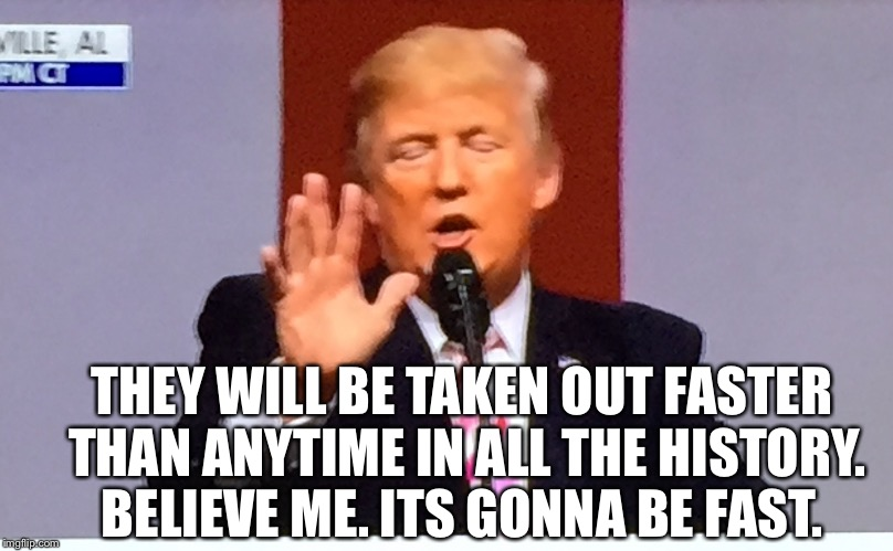 Trump no BS | THEY WILL BE TAKEN OUT FASTER THAN ANYTIME IN ALL THE HISTORY. BELIEVE ME. ITS GONNA BE FAST. | image tagged in trump no bs | made w/ Imgflip meme maker