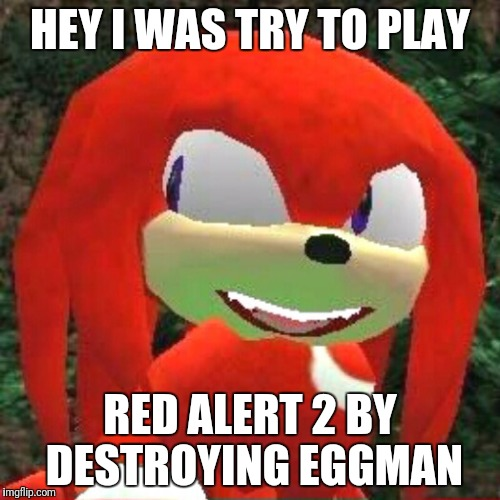 The face you make Knuckles | HEY I WAS TRY TO PLAY RED ALERT 2 BY DESTROYING EGGMAN | image tagged in the face you make knuckles | made w/ Imgflip meme maker