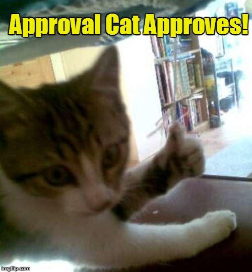 Approval Cat Approves! | made w/ Imgflip meme maker