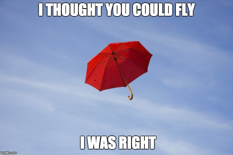 fly umbrella | I THOUGHT YOU COULD FLY I WAS RIGHT | image tagged in umbrella,flying,memes | made w/ Imgflip meme maker