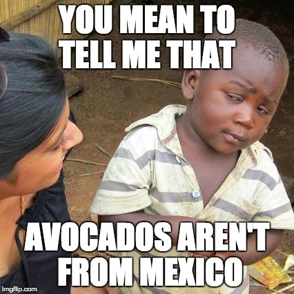 Avocados from Mexico | YOU MEAN TO TELL ME THAT AVOCADOS AREN'T FROM MEXICO | image tagged in memes,third world skeptical kid,avocado,so you mean to tell me,but why tho | made w/ Imgflip meme maker