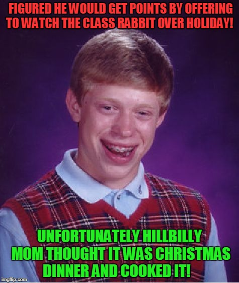 Bad Luck Brian Meme | FIGURED HE WOULD GET POINTS BY OFFERING TO WATCH THE CLASS RABBIT OVER HOLIDAY! UNFORTUNATELY HILLBILLY MOM THOUGHT IT WAS CHRISTMAS DINNER  | image tagged in memes,bad luck brian | made w/ Imgflip meme maker