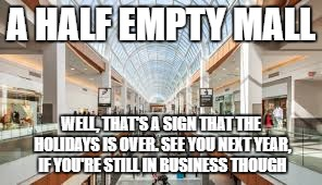 A HALF EMPTY MALL WELL, THAT'S A SIGN THAT THE HOLIDAYS IS OVER. SEE YOU NEXT YEAR, IF YOU'RE STILL IN BUSINESS THOUGH | image tagged in shopping mall | made w/ Imgflip meme maker