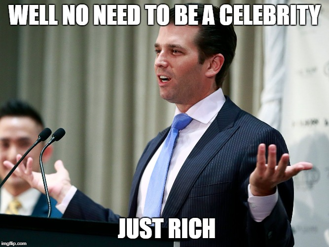 What Else Jr? | WELL NO NEED TO BE A CELEBRITY JUST RICH | image tagged in what else jr | made w/ Imgflip meme maker