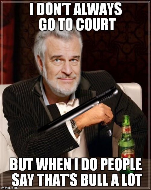 I DON'T ALWAYS GO TO COURT BUT WHEN I DO PEOPLE SAY THAT'S BULL A LOT | made w/ Imgflip meme maker