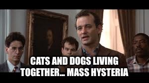 CATS AND DOGS LIVING TOGETHER... MASS HYSTERIA | made w/ Imgflip meme maker