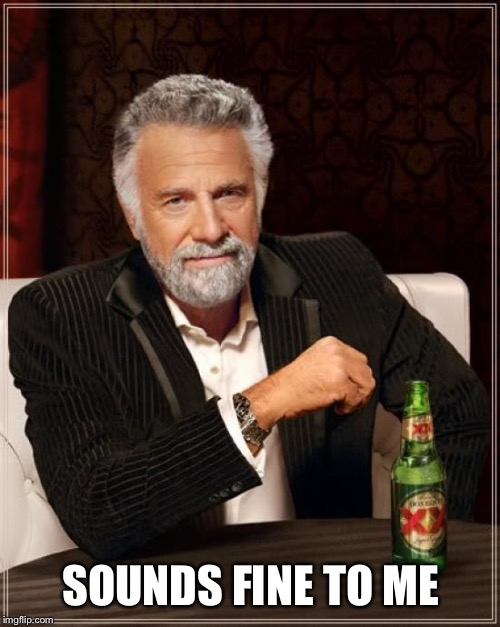 The Most Interesting Man In The World Meme | SOUNDS FINE TO ME | image tagged in memes,the most interesting man in the world | made w/ Imgflip meme maker