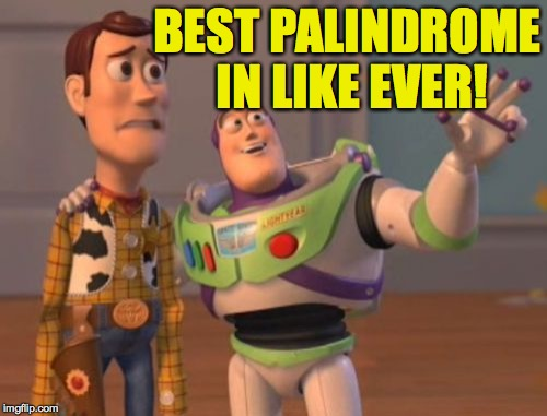 X, X Everywhere Meme | BEST PALINDROME IN LIKE EVER! | image tagged in memes,x x everywhere | made w/ Imgflip meme maker
