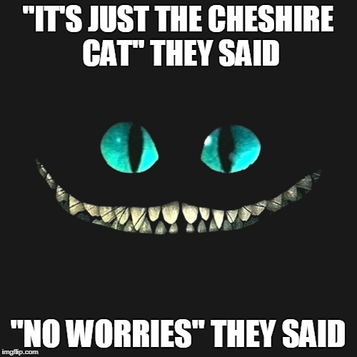 """IT'S JUST THE CHESHIRE CAT"" THEY SAID ""NO WORRIES"" THEY SAID 