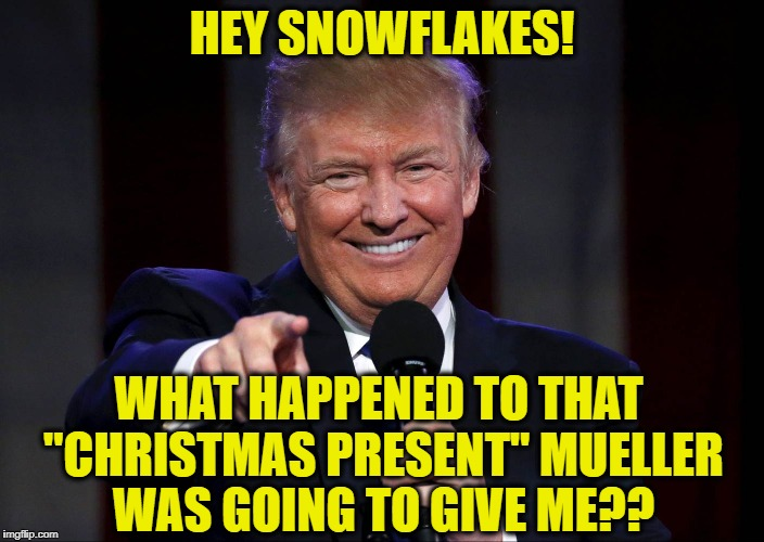 "HEY SNOWFLAKES! WHAT HAPPENED TO THAT ""CHRISTMAS PRESENT"" MUELLER WAS GOING TO GIVE ME?? 