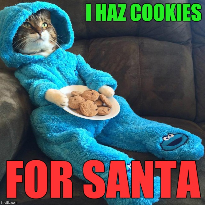 I HAZ COOKIES FOR SANTA | made w/ Imgflip meme maker