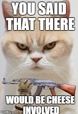 Always Remember to Feed Your Cat | YOU SAID THAT THERE WOULD BE CHEESE INVOLVED | image tagged in angry cat,ak47 | made w/ Imgflip meme maker