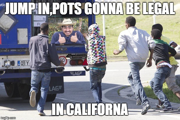 Immigrants  | JUMP IN,POTS GONNA BE LEGAL IN CALIFORNA | image tagged in immigrants | made w/ Imgflip meme maker