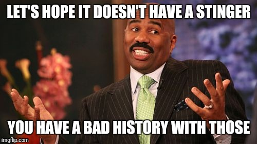 Steve Harvey Meme | LET'S HOPE IT DOESN'T HAVE A STINGER YOU HAVE A BAD HISTORY WITH THOSE | image tagged in memes,steve harvey | made w/ Imgflip meme maker