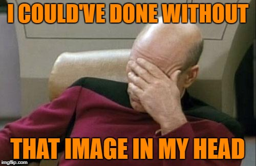 Captain Picard Facepalm Meme | I COULD'VE DONE WITHOUT THAT IMAGE IN MY HEAD | image tagged in memes,captain picard facepalm | made w/ Imgflip meme maker