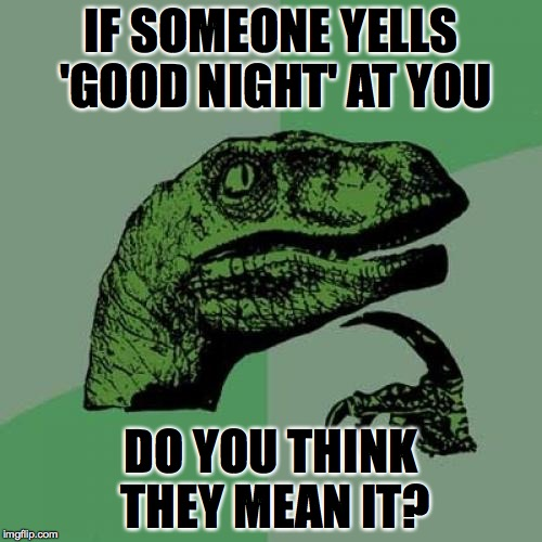 Philosoraptor Meme | IF SOMEONE YELLS 'GOOD NIGHT' AT YOU DO YOU THINK THEY MEAN IT? | image tagged in memes,philosoraptor | made w/ Imgflip meme maker