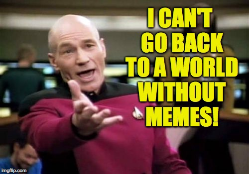 Picard Wtf Meme | I CAN'T GO BACK TO A WORLD WITHOUT MEMES! | image tagged in memes,picard wtf | made w/ Imgflip meme maker