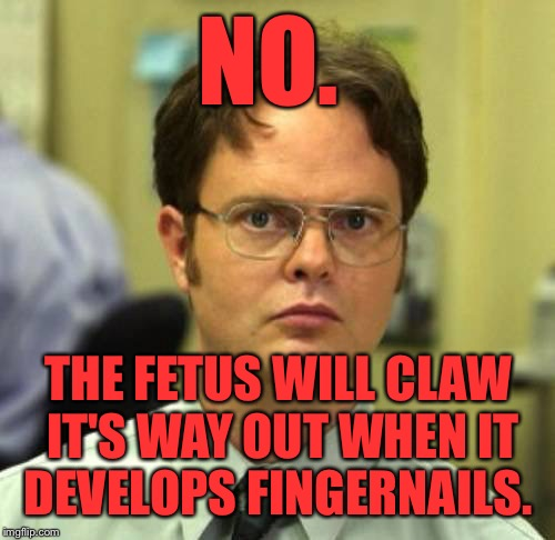 NO. THE FETUS WILL CLAW IT'S WAY OUT WHEN IT DEVELOPS FINGERNAILS. | made w/ Imgflip meme maker