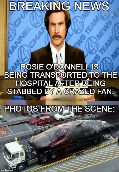 Breaking News | BREAKING NEWS PHOTOS FROM THE SCENE: ROSIE O'DONNELL IS BEING TRANSPORTED TO THE HOSPITAL AFTER BEING STABBED BY A CRAZED FAN. | image tagged in ron burgundy,breaking news,rosie o'donnell,obese,whale,memes | made w/ Imgflip meme maker