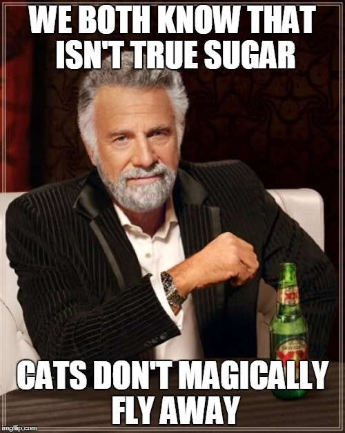 The Most Interesting Man In The World Meme | WE BOTH KNOW THAT ISN'T TRUE SUGAR CATS DON'T MAGICALLY FLY AWAY | image tagged in memes,the most interesting man in the world | made w/ Imgflip meme maker
