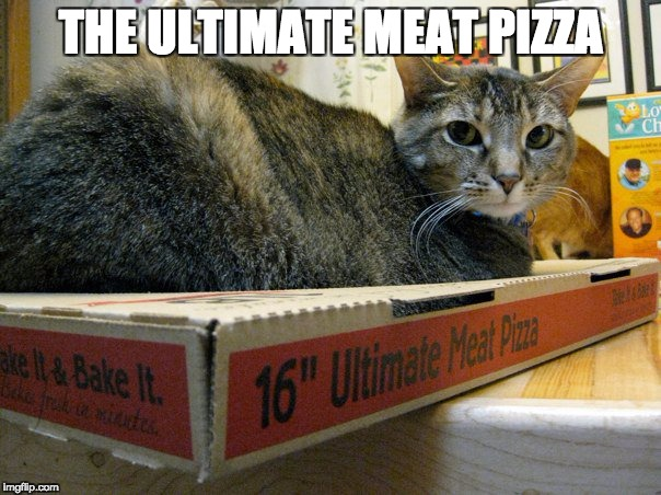 ultimate meat pizza | THE ULTIMATE MEAT PIZZA | image tagged in meat,chinese food,catfood,undercooked | made w/ Imgflip meme maker