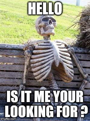 Waiting Skeleton Meme | HELLO IS IT ME YOUR LOOKING FOR ? | image tagged in memes,waiting skeleton | made w/ Imgflip meme maker