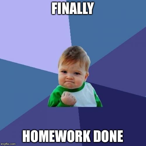Success Kid Meme | FINALLY HOMEWORK DONE | image tagged in memes,success kid | made w/ Imgflip meme maker