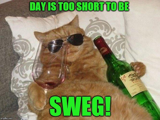 DAY IS TOO SHORT TO BE SWEG! | made w/ Imgflip meme maker