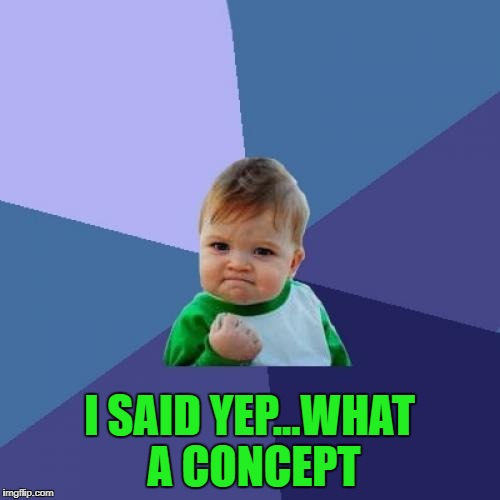 Success Kid Meme | I SAID YEP...WHAT A CONCEPT | image tagged in memes,success kid | made w/ Imgflip meme maker